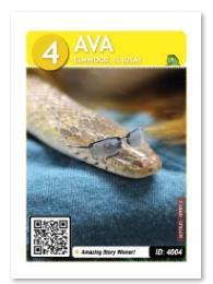 Ava_card_web