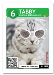 Cat_Tabby_Card
