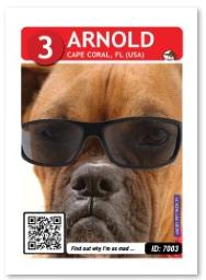 Dog_Arnold_Card