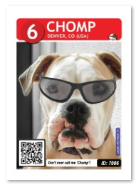 Dog_Chomp_Card_web