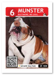 Dog_Munster_Card