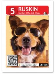 Dog_Ruskin_Card