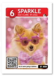 Dog_Sparkle