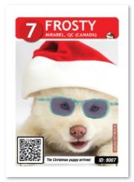 Frosty_Sparkle