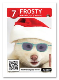 Frosty_card_web