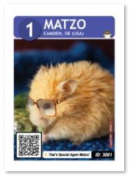 Hamster_Matzo
