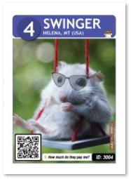Hamster_Swinger