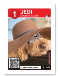 Jedi_card_web