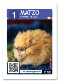 Matzo_card_web
