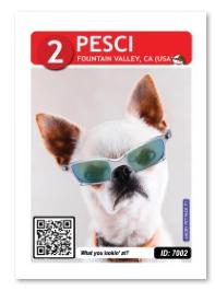 Pesci_card_web