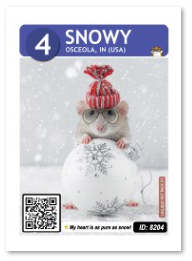 Snowy_card_web