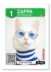 Zappa_web