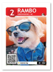 rambo_card_web