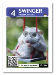 swinger_card_web