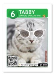 tabby_card_web