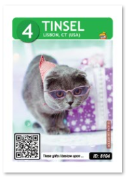 tinsel_card_web